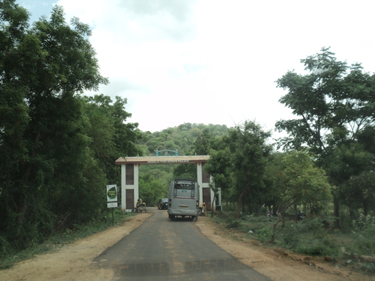 Pilibhit Wildlife Sanctuary