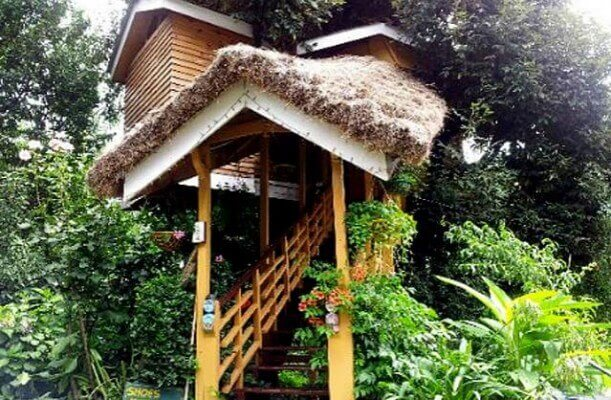 Tree-House-Cottage-Manali-611x400(1)