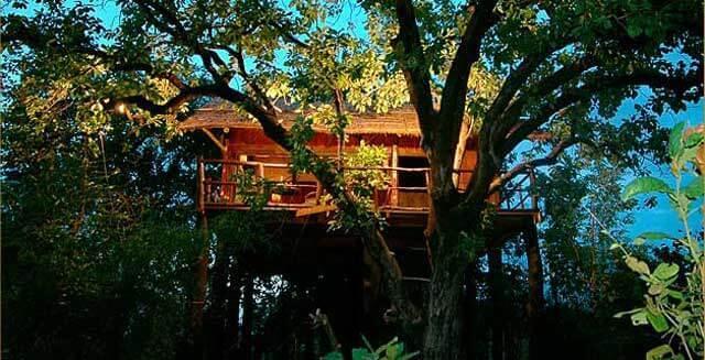 Tree-House-Hideaway(1)