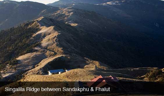 sandakphu-phalut-trek